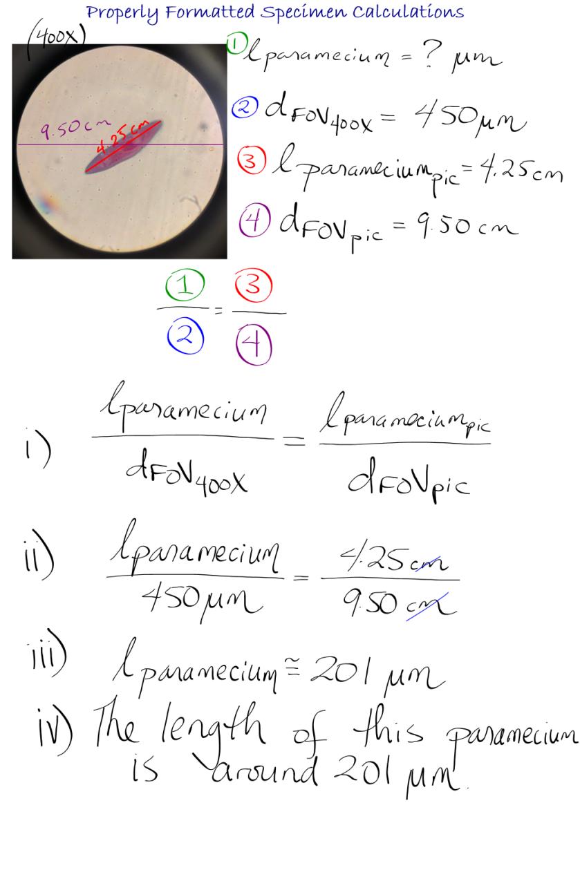Sbi3u Notes